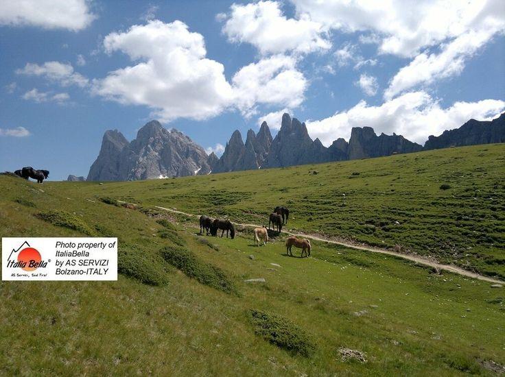 Seja no verão ou no inverno, as #Dolomitas é um encanto! Com o grupo ITALIABELLA você conhecerá #roteiros maravilhosos e inusitados!