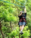 Discover the best activities in Montego Bay including Canopy Tour, Dunns River Falls and Ocho Rios Shopping Tour, Jamaica Combo Tour: Dunn's River Falls and Bob…