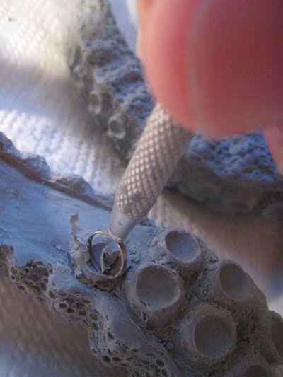 Sculpting tentacles - a tutorial