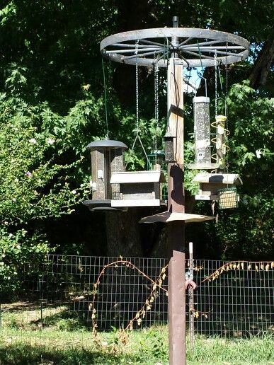 Old wheel used for a bird feeding station.