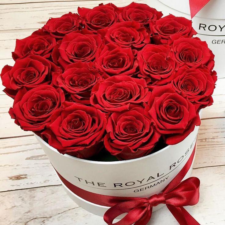 136 besten the royal roses rosenbox flowerbox infinity rosen konservierte rosen bilder. Black Bedroom Furniture Sets. Home Design Ideas
