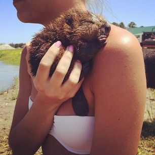 THIS AMAZING BABY BEAVER. | 31 Pictures Of Baby Animals To Remind You The World Is Wonderful
