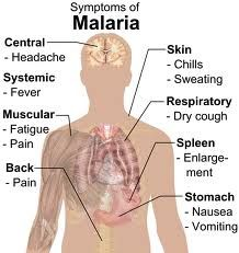 Symptoms of malaria include fever, headache, and vomiting, and usually appear between 10 and 15 days after the mosquito bite. If not treated, malaria can quickly become life-threatening by disrupting the blood supply to vital organs. In many parts of the world, the parasites have developed resistance to a number of malaria medicines.  Be Safe Be Vaccinated with us at http://mykidsvaccines.com/aboutvaccines.htm