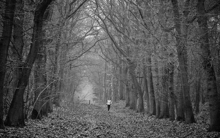 Runner in the forest. Photo by Henk Jansen -- National Geographic Your Shot