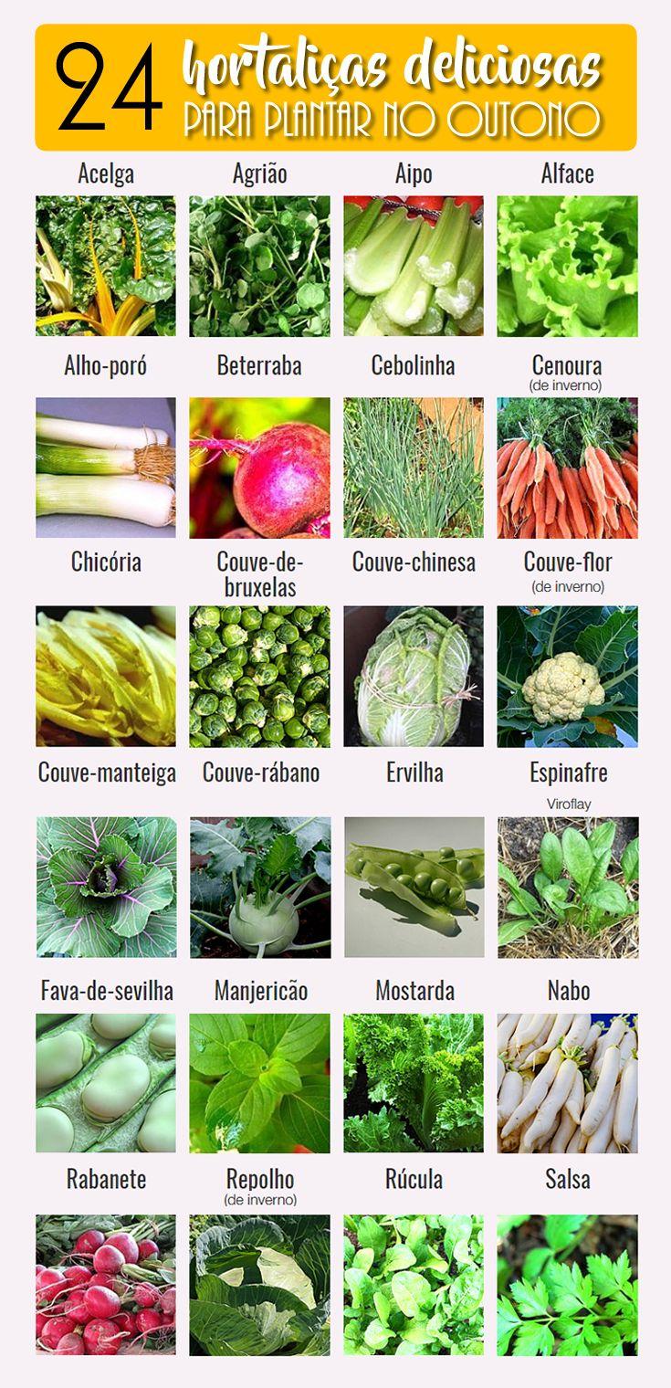 24 hortaliças para plantar no Outono - Jardineiro.net #horta #hortaurbana #outono #jardinagem #vidasaudável #healthfood #vegetablegarden #squarefootgarden #hortaliça
