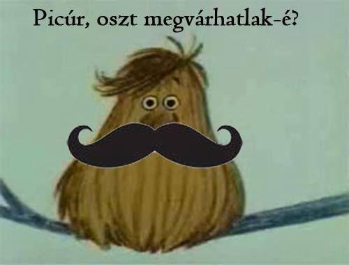 Emlékeztek még? :) A legjobb Hungaro mémek!
