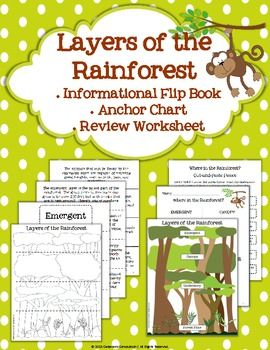layers of the rainforest flip book 3 science in the classroom pinterest. Black Bedroom Furniture Sets. Home Design Ideas
