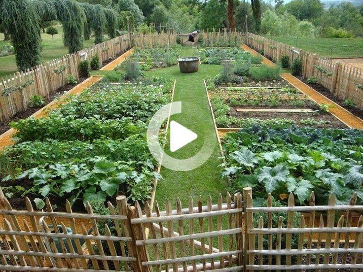 Vier Frosche Drei Gorillas Und Ein Oger Botanischer Garten Skulpturen Garten Formschnitt Garten