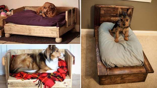 Cucce per cani per interni in pallet di legno