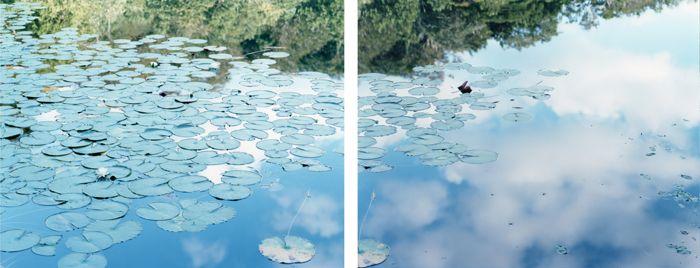 RISAKU SUZUKI: Stream of consciousness, Tokyo Opera City Art Gallery   Christophe Guye Galerie