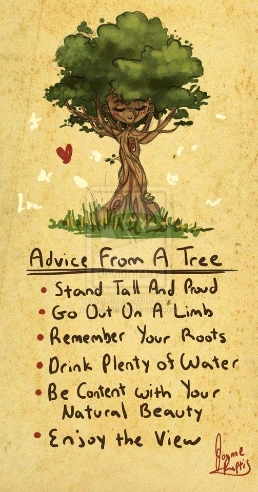 Advice from a tree. Good advice. I love trees :)