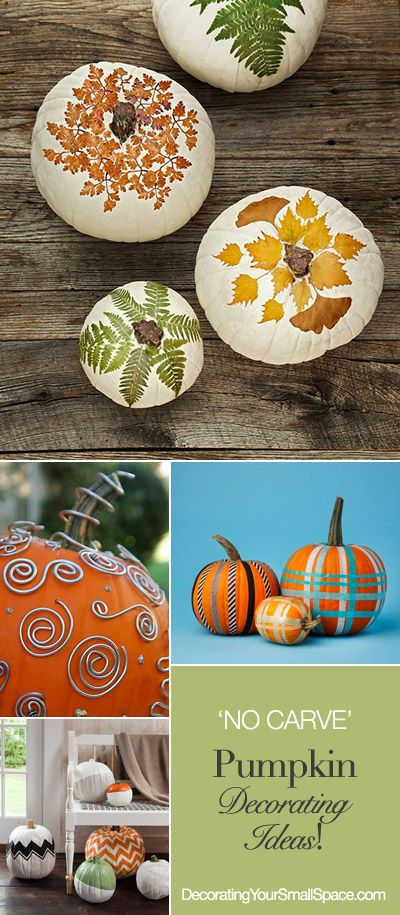 'No Carve' Pumpkin Decorating Ideas! beautiful with more ferns laid flat underneath them. Great for #Thanksgiving centerpiece, glued #leaves on tops of pumpkins.