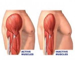Are you suffering from Muscle Atrophy?