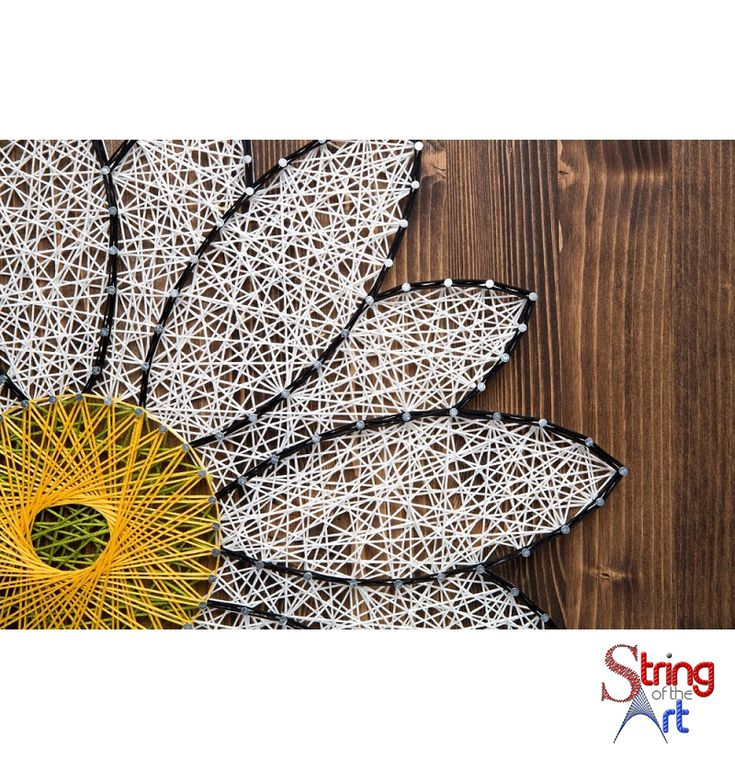 Mejores 164 imgenes de diy string art kits en pinterest pulsera white daisy string art do it yourself kit solutioingenieria Images