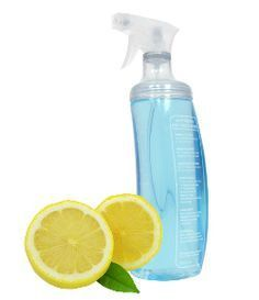 Learn how to make homemade lemon flea spray, a natural flea repellent! http://www.petpampa.com/homemade-flea-spray/ #petcare #fleas #dogs #cats