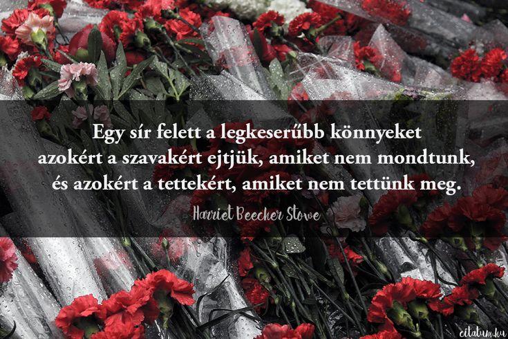 Harriet Beecher Stowe idézet az elvesztett lehetőségekről.