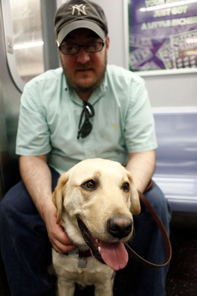 learning how to train a dog to help the blind How to care for a blind dog updated on june 8 it does take time and training of new voice help your blind dog learn the new layout with leash,verbal and.