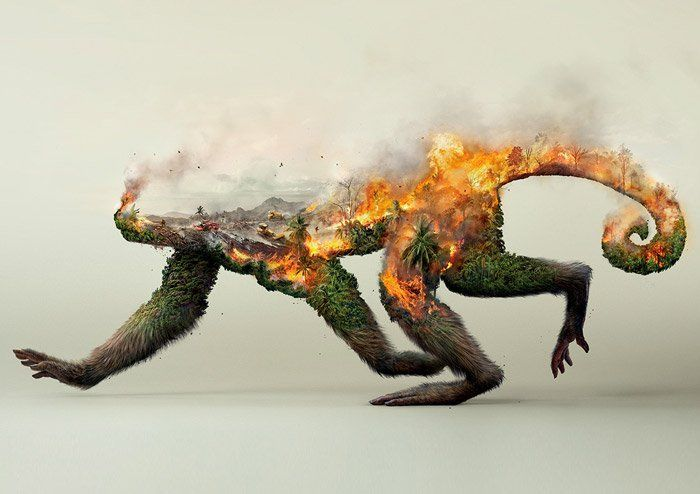 """Hamburg-based agency Grabarz & Partner commissioned Illusion CGI Studio to create these incredible artworks for Robin Wood's """"Destroying nature is destroying life"""" campaign.  """"This time Illusion were on assignment to help Robin Wood, the environmental activists, by creating three powerful full CG visuals to raise public awareness of the ongoing destruction of animals' natural habitats. We are proud to have been part of this social campaign, illustrating Grabarz & Pa..."""