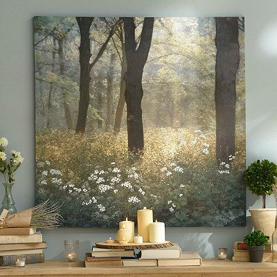 Product Details Mornings in the Forest Canvas Art Print