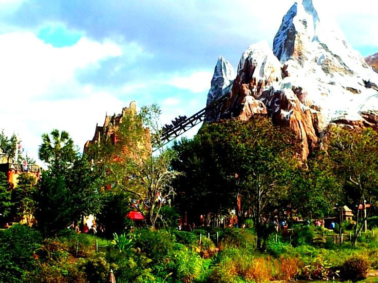 Everest Ride at the Animal Kingdom in Walt Disney World. Orlando Florida
