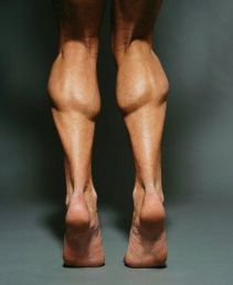 Sleek and tone calf muscle routine - This is my FAVORITE muscle to look at on both men/women.