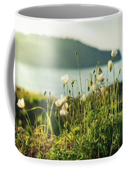 Mariia Kalinichenko Coffee Mug featuring the photograph Sensual White Poppies In The Morning Sun. by Mariia Kalinichenko #MariiaKalinichenkoFineArtPhotography #Poppies #HomeDecor #CoffeMug #Flowers