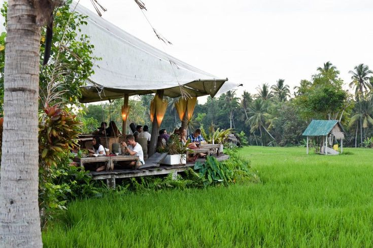 Best Coffee Shops In Bali Top 10 Best Cafes In Bali You Must Visit Living Nomads Travel Tips Guides News Information Farm Cafe Coffee Shop Cool Cafe