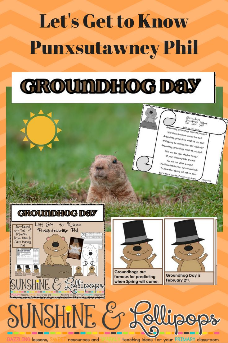 Let's celebrate Punxsutawney Phil...If you want a resource that combines nonfiction and fiction with tons of fun and educational materials, then this resource is definitely for you!!!! Check it out!