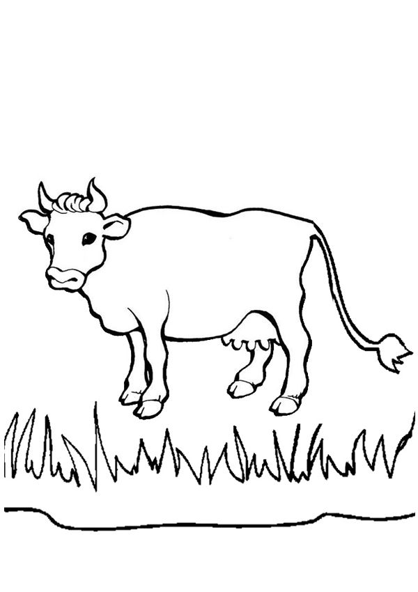 Free Online Cow Colouring Page