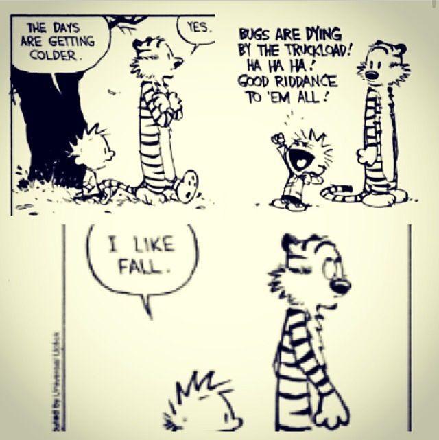 Haha #autumn #fall #jokes #funny