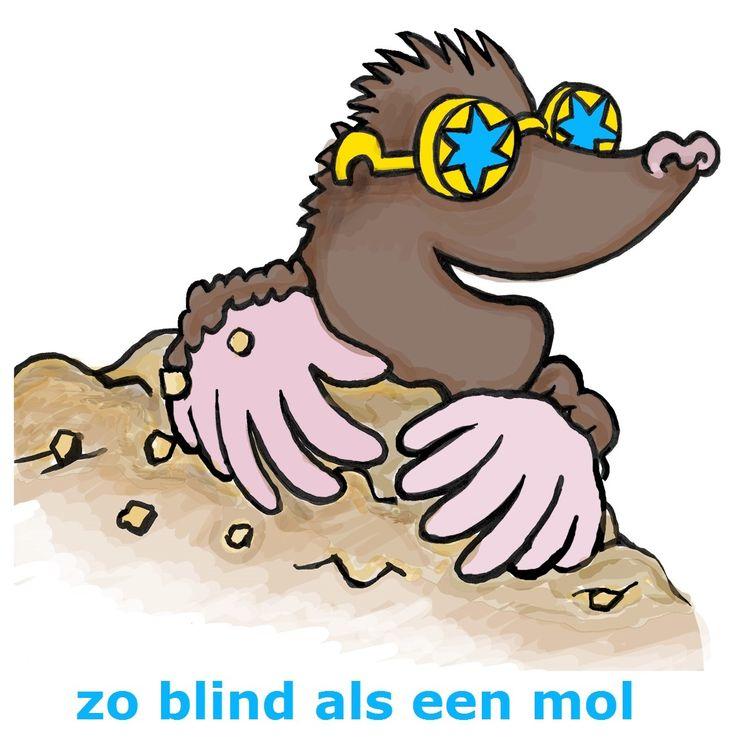 ZO BLIND ALS EEN MOL  (= stekeblind, erg blind).