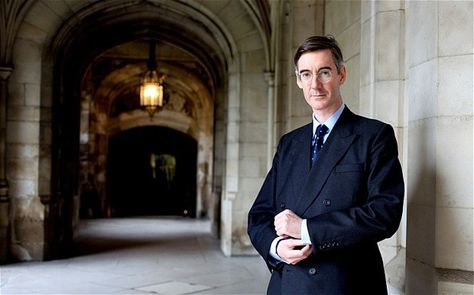 """portraits as 'chicken feed'. Jacob Rees-Mogg, the Tory MP, says some of his colleagues were """"shy and retiring"""" about having paintings of themselves commissioned"""