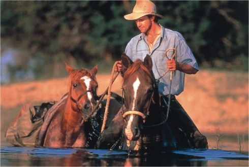 Horse Safaris - This is possibly the best way in the world to see wild game – to be one of the herd. But remember in reserves where there are lions does carry a risk. It all adds to the adrenaline, though.