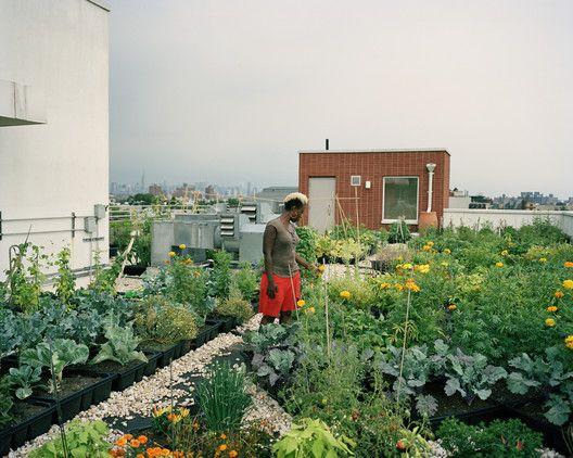 26 best urbanfarm images on Pinterest | Architectural drawings ...