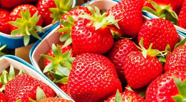 #Fraise de #Carpentras - http://www.savourez-la-provence.fr/blog-gastro/la-fraise-de-carpentras-reine-sucree-du-printemps/ #Vaucluse #Provence