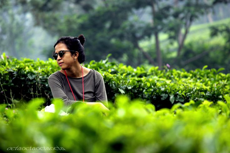 Daerah ini dikenal sebagai tempat peristirahatan penduduk kota Jakarta dan sebagai daerah perkebunan teh yang dibangun oleh pemerintah kolonial Belanda yang kini merupakan Perkebunan Teh milik PT Perkebunan Nusantara VIII Gunung Mas