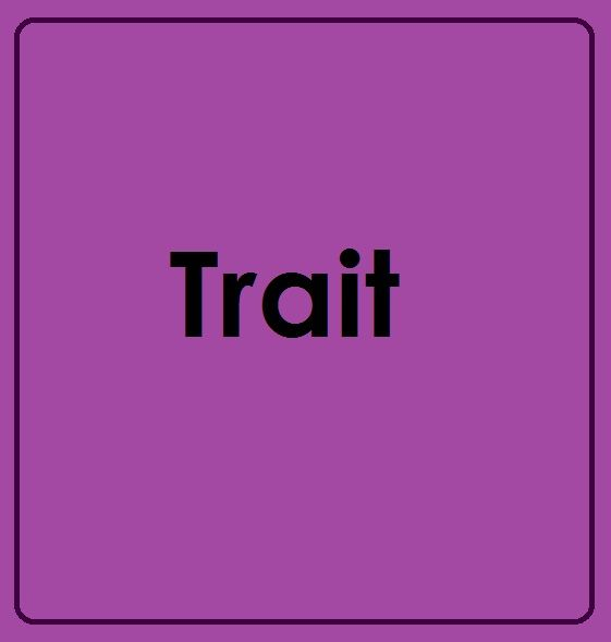 Trait Theory Leadership