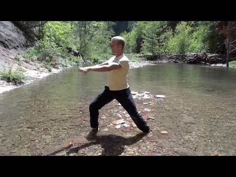 TIGER Kung Fu - Dead Style Qigong - YouTube