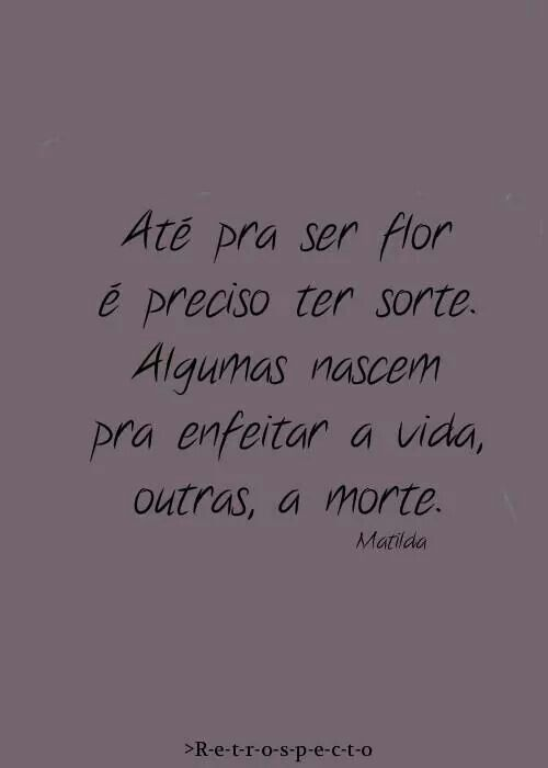 1000 images about frases tristeza on pinterest te amo for Terrace in a sentence