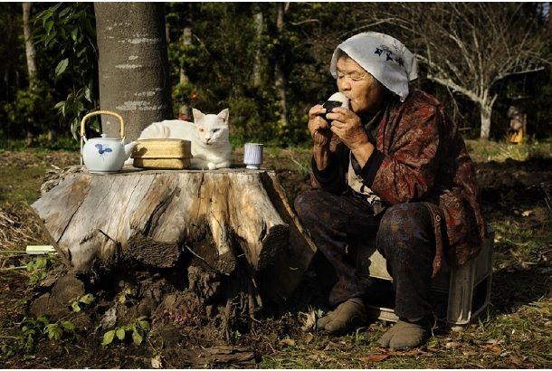 おばあちゃんと猫の写真集『みさおとふくまる』 | roomie(ルーミー)