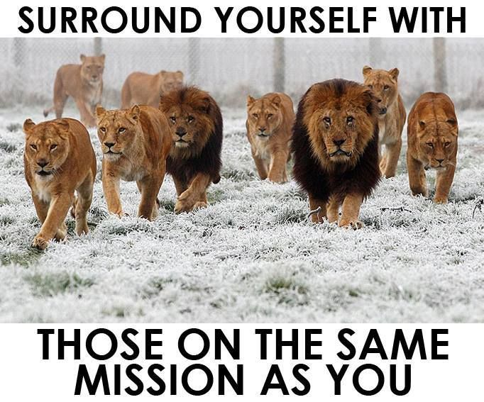We are on a Mission - Surround yourself on the same mission as you. Watch magic happen!