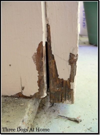 How to repair rotten door frame using Elmer's rotted wood repai