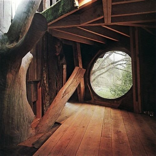 Treehouse with window