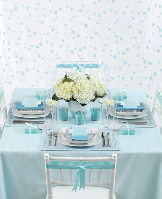 Tiffany blue table setting..Oh the possibilities.