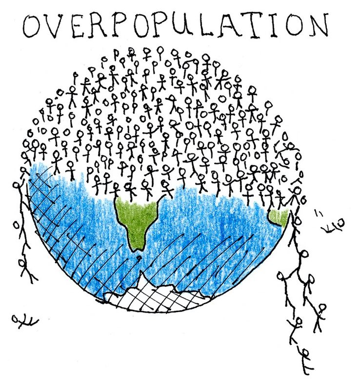 essay overpopulation Free essay: in a 1974 report submitted to the white house, the secretaries of defense, state, and agriculture, and the heads of the cia and the agency for.