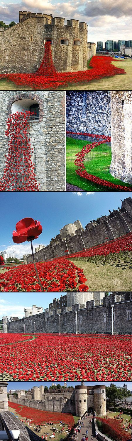 This summer, the Tower Of London will be surrounded by a sea of crimson. This installation, conceived by artist Paul Cummins and designer Tom Piper, will commemorate each and every British or Colonial fatality from World War 1 by planting 888, 246 red ceramic poppies in a flowing sea around the tower.: