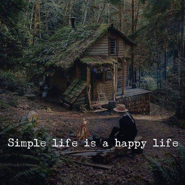 Life Status For Whatsapp Life Life Status Happy Life