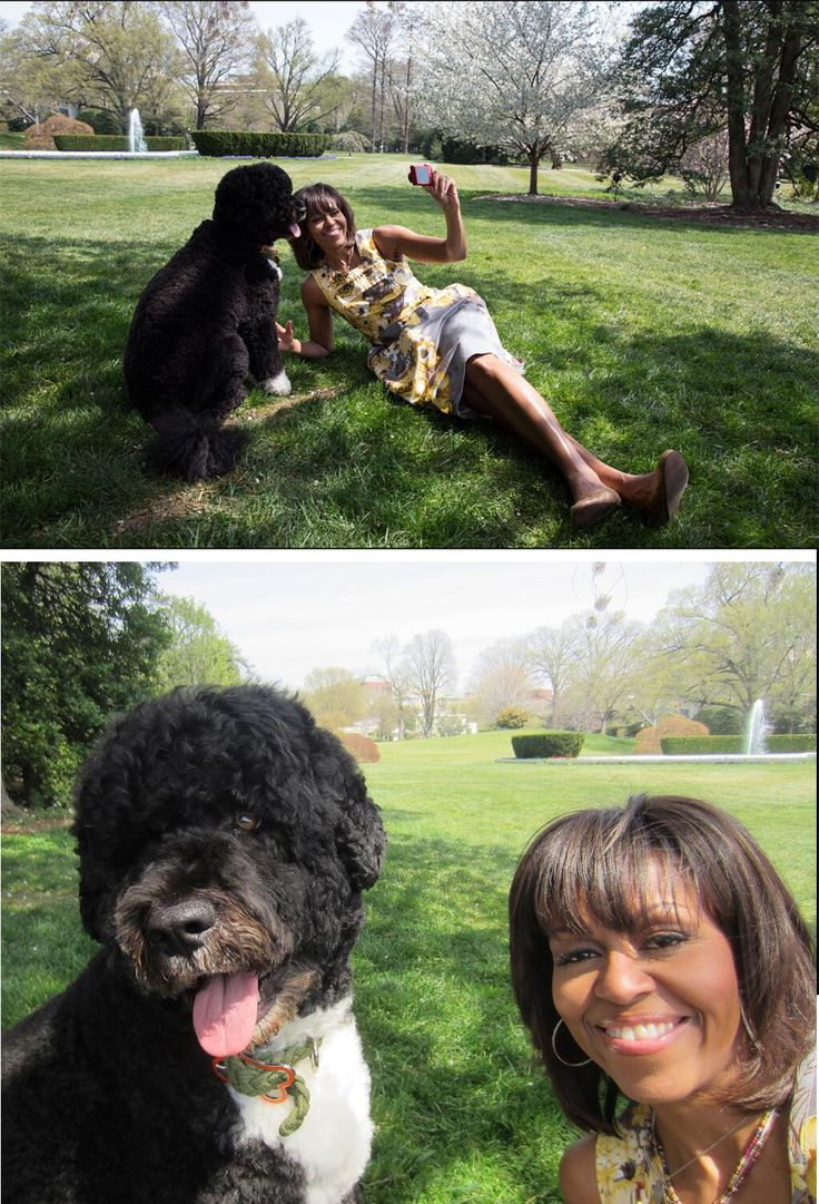 TODAY Show: Michelle/Bo Obama Photo Is One of Year's Best Selfies