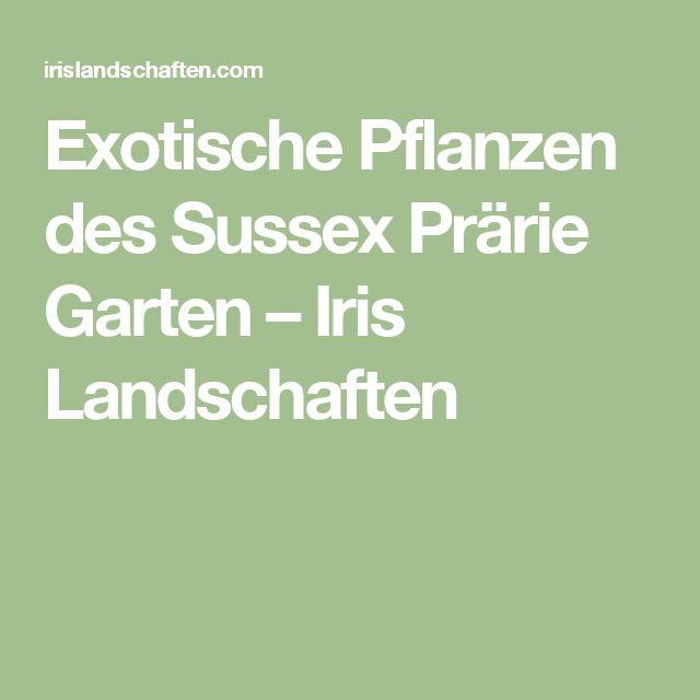 Exotische Pflanzen des Sussex Prärie Garten – Iris Landschaften