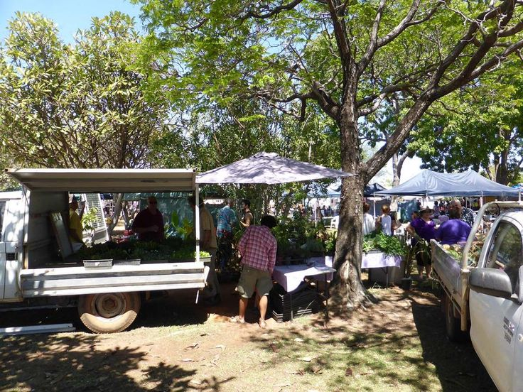 Lovely shade to enjoy a browse through the Katherine Markets, Katherine NT. Now available on RvTrips. Lots more at: www.rvtrips.com.au/nt/katherine/katherine-markets/